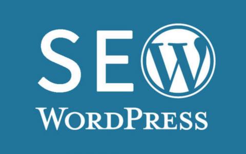 免费分享一款收费WordPress SEO插件